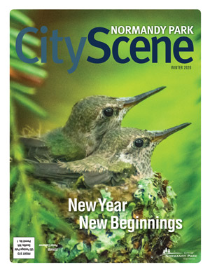 2020 Winter Normandy Park City Scene Magazine