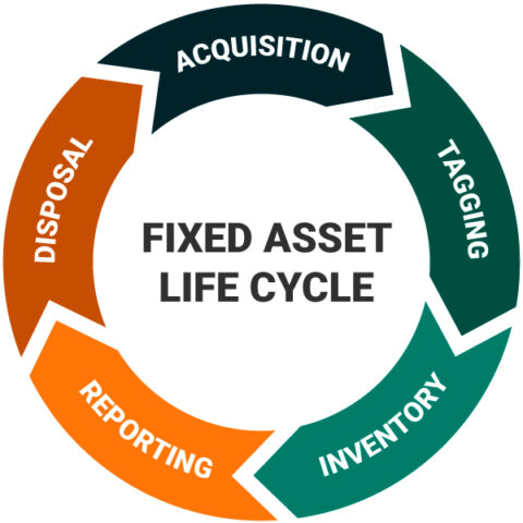 Fixed Asset Life Cycle: Aquisition, Tagging, Inventory, Reporting, Disposal, Aquisition.